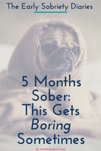 early sobriety 5 months sober boring pug