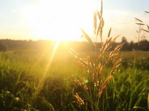 serenity-prayer-sunset