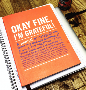 gratitude journal ok fine im grateful recovery sobriety resources
