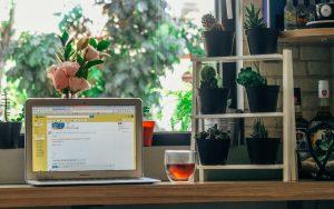 website design development sober recovery entrepreneurs
