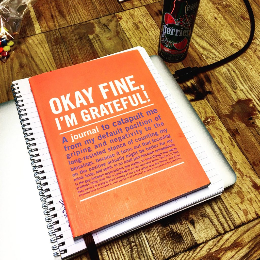 how i survived my first 30 days of sobriety - gratitude journal - gratitude lists - recovery